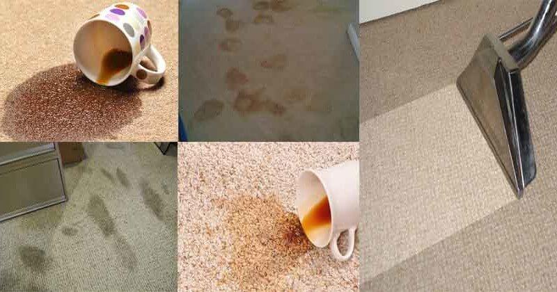 Hình 1 trong Hướng dẫn 6 cách giặt và vệ sinh thảm tại nhà nhanh chóng và sạch sẽ