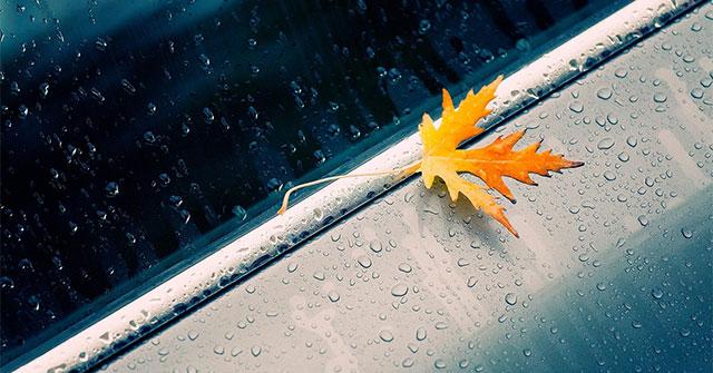 Full Hd Rain Wallpaper For Those You Are Sad
