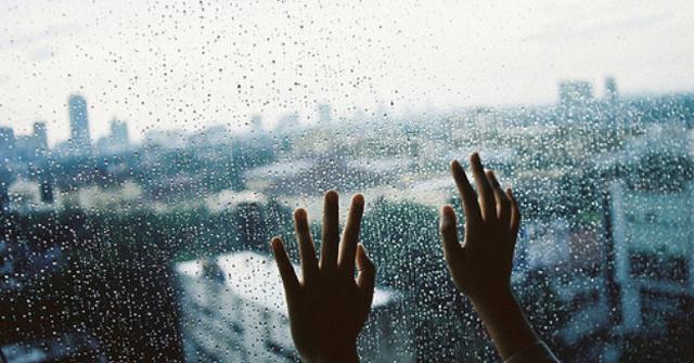 rain wallpaper - tipsmake.com